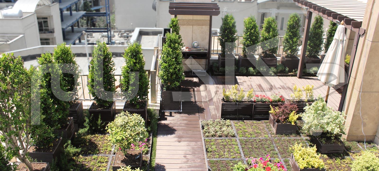 پروژه های بام سبز