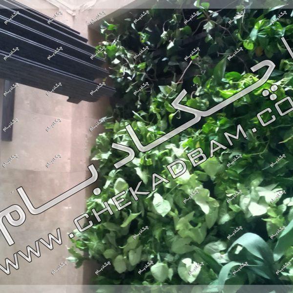 پروژه گرین وال آقای عسلی ۱۳۹۶