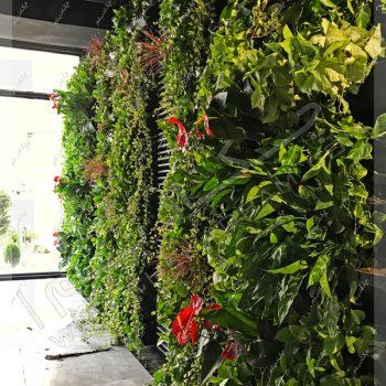 دیوار سبز داخلی - پروژه گرین وال(دیوار سبز) شرکت علی بابا
