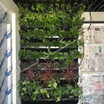 پروژه گرین وال (دیوار سبز) شرکت ایر یاتاش