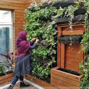پروژه تراس سبز(روف گاردن) جناب موسوی