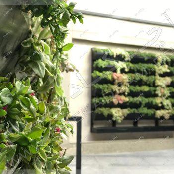 دیوار سبز دیباجی