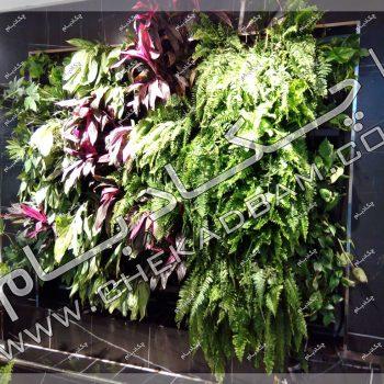 دیوار سبز دکوراسیون داخلی - پروژه دیوار سبز اتاق بازرگانی، صنایع، معادن و کشاورزی تهران -دیوار سبز دکوراسیون داخلی1396