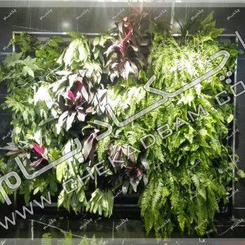 دیوار سبز دکوراسیون داخلی -پروژه دیوار سبز اتاق بازرگانی، صنایع، معادن و کشاورزی تهران 1396