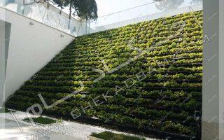 پروژه دیوار سبز شهرک غرب- قیمت دیوار سبز