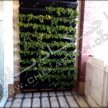 پروژه گرین وال (دیوار سبز) جناب مغربی