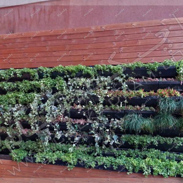 پروژه تراس سبز(روف گاردن) جناب بریری