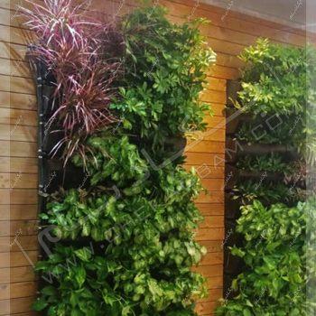 دیوار سبز - دیوار سبز تهران