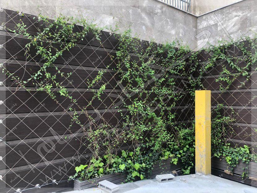 دیوار سبز کابلی